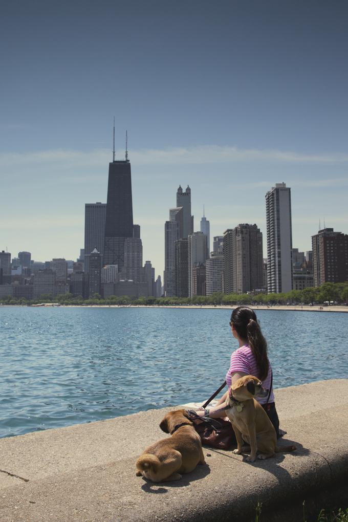 #PHroadtrip Week 3: Gold Coast Chicago, IL   picklesnhoney.com