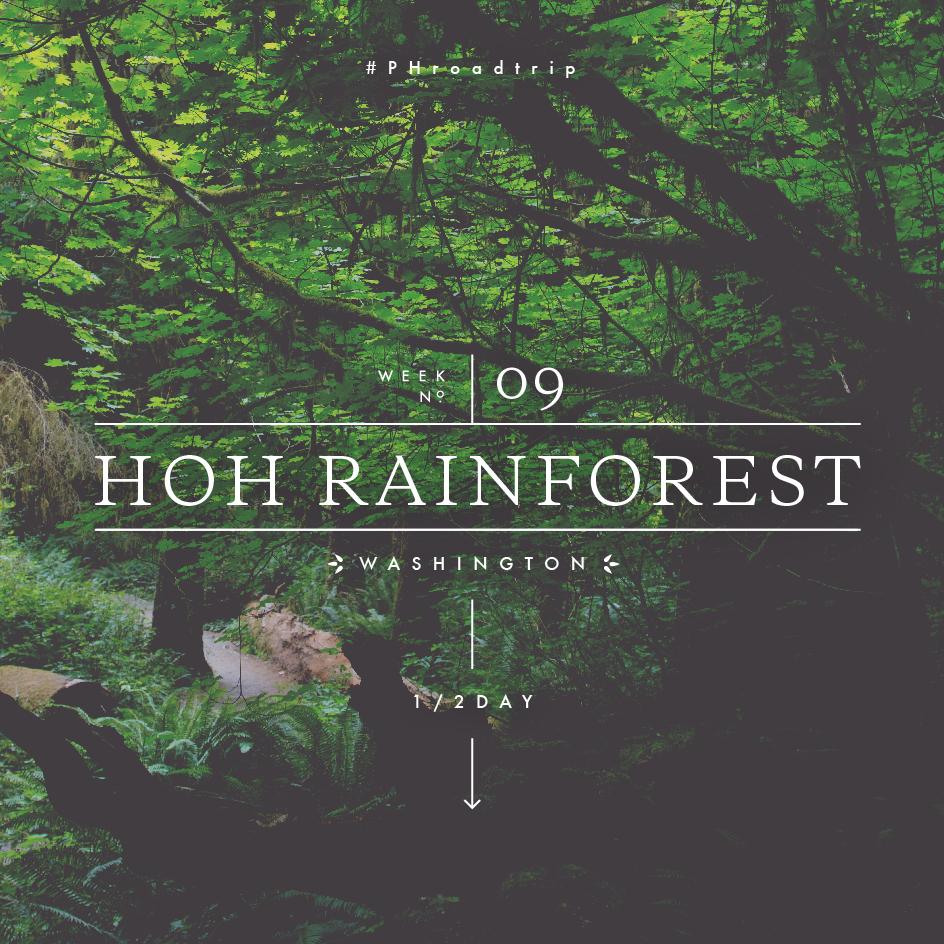 #PHroadtrip Week 9: Hoh Rainforest, WA | picklesnhoney.com