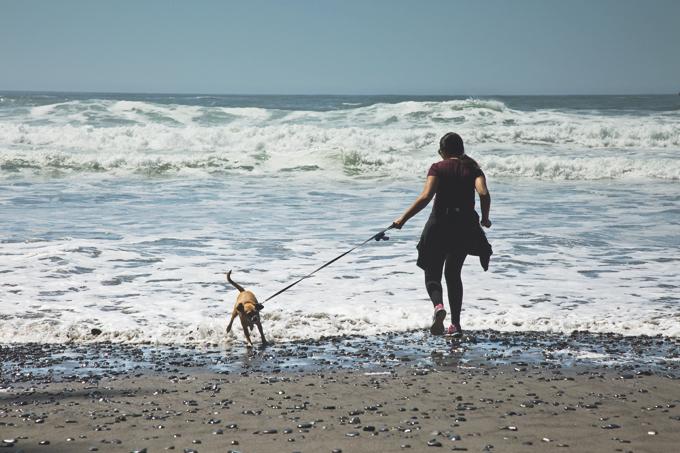 #PHroadtrip Week 9: Rialto Beach Olympic National Park, WA | picklesnhoney.com