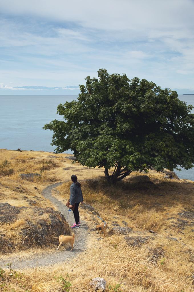 #PHroadtrip Week 9: San Juan Island, WA | picklesnhoney.com